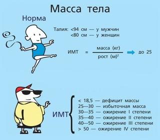 Узнай свой индекс массы тела